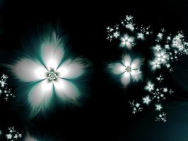 Night Flowers by janinesmith54