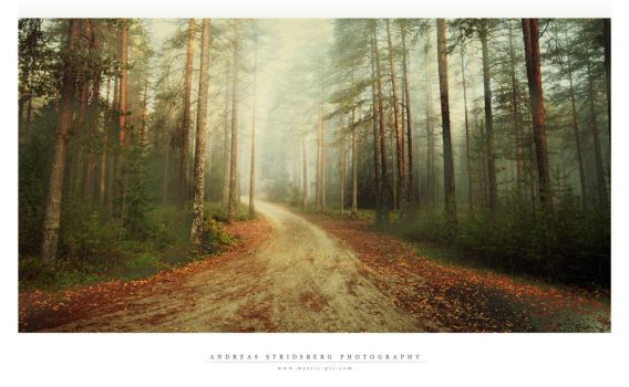 Mystic Road by Stridsberg