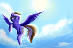 In Flight by Maexis