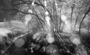 Infrared Creekside by aRt2faKt