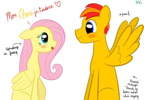 Fluttershy: Mon Chari je t'adore by mtfc1029