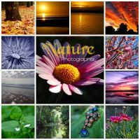 Nature Photographer ID Entry by game-breaker