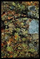 Abstract Canvas I by Shmithers