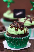 Chocolate Mint Cupcakes by theresahelmer