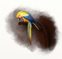 MR Parrot by mannafig
