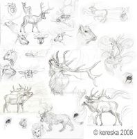 sketches 15 - elk study by kery-kereska