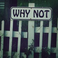 Why Not? by Camaryn