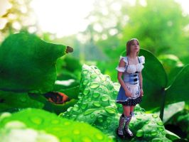 Alice, 5003. by SamanthaMarie258