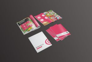 Recruitplus Corporate Profile Brochure Design by Lemongraphic