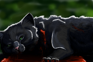 Spoilers! Hollyleaf's Death by puddlecat1