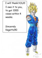1000 views by Vegetto90