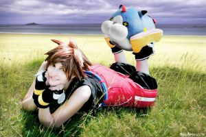 Sora - Meow Wow by SoraPilzi