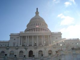 Nation's Capitol by Darthpickle