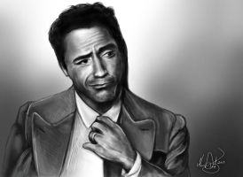Robert Downey Jr by ChangesHappen
