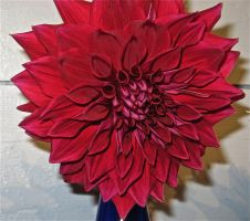 red foreign flower by thunderstorm151