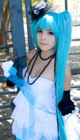Miku Version Cantarella Cosplay by AsamiKyu