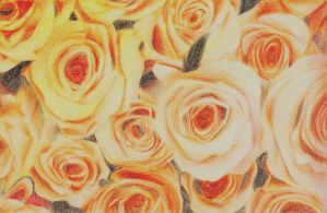 yellow roses by mady95