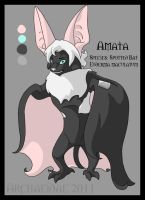 Amata the Spotted Bat by Archaeidae