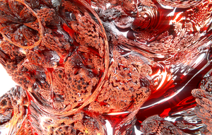 Raytraced Mandelbulb by sono2000