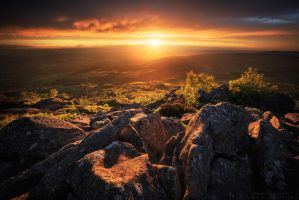 Nature's Reward by FlorentCourty