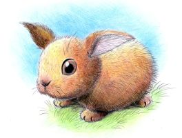 Rabbit by don234a