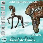 Horse Statue  Cheval de bronze :STOCK: by NathL-fr