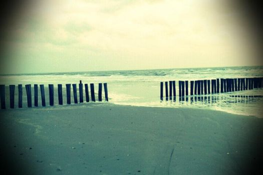 Line Of Poles On The Beach by Stockbroker