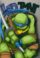 Leonardo by Anisketch