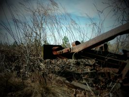 Abandoned Carwreck part 7 by TheProdigy100