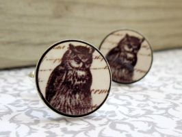 Owl Mens Cufflinks by baronyka
