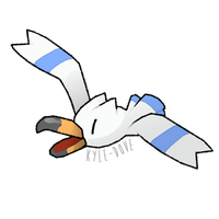PokeCollab - Wingull by Kyle-Dove