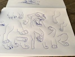 Paw practice  by dyb