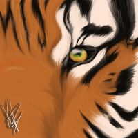 Eye of The Tiger by PlatinumxRose