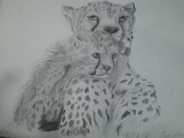 Cheetah and Cub by Endivinity