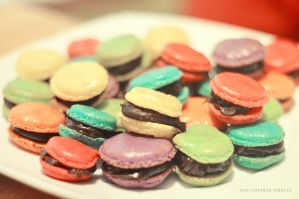 french macaroons 2 by himynameisbianca