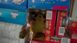 LITTLE CHUS HIDING by impostergir007