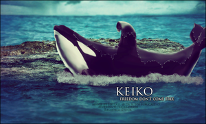 keiko for cait by shyfall