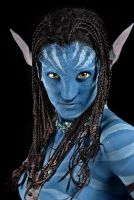 Avatar by Gil-Levy
