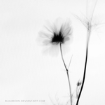 to let myself go by Blaumohn