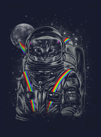 CAT SPACE MISSION by dandingeroz