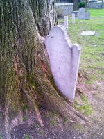 Tree of Death by blindtetra