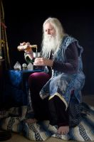 2014-09-16 Butterbeer Wiz 05 by skydancer-stock