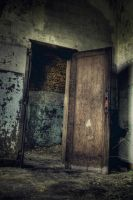 Lost door by kromo
