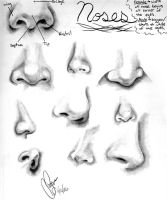 Nose References by Tarana