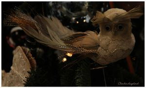 Christmas Owl by Claudia008