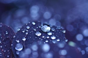 droplets by girlmarvel