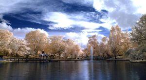 Golden Trees Lake by limecity