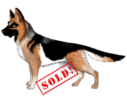 German Shepard adopt-Auction-(Closed) by CrystalCircle