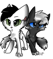 .:PC:. Skyburn and Crowpool by MintyGumball
