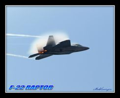 F-22 RAPTOR by Dracoart